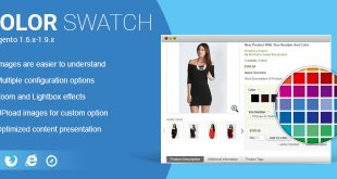 Magento Color Swatch Extension for Ecommerce Website