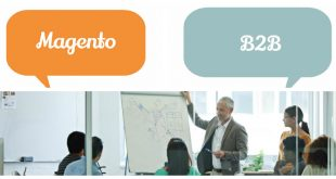 B2B business with Magento themes and extensions
